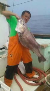 輪島の魚 アラ