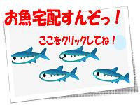 sakana_banner
